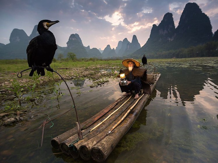 national-geographic-photo-of-the-day-internet-favorites-2015__880.jpg